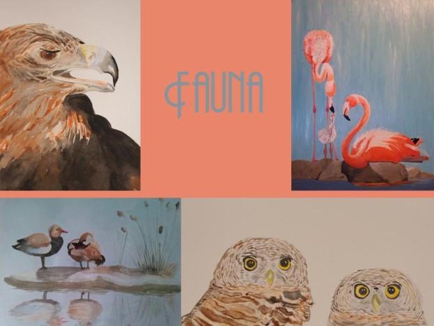 10 fauna aves